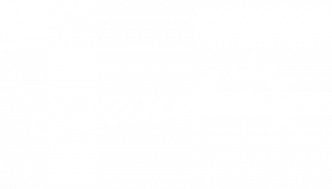 evandra3
